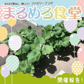 【6月】まるめろ食堂開催報告!