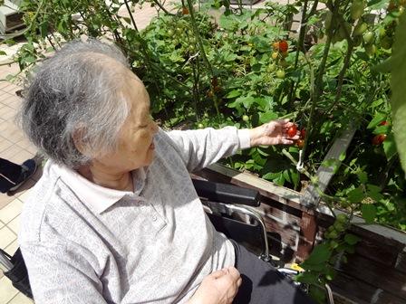 kanayatokuyo-syuukaku-3.JPG