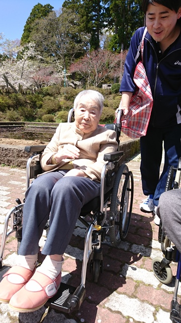 ohanami-kanaya-4.jpg